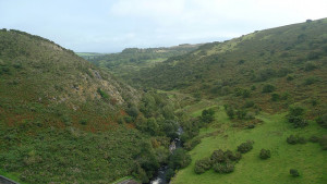 Dartmoor is one of the areas of the South West protected under EU Directives