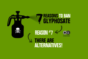 glyphosate_7alternatives